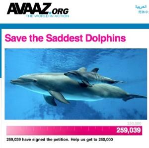 Avaaz, saddest dolphins, Samoa, tourism, impact,